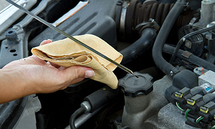 Vehicle Maintenance Plan